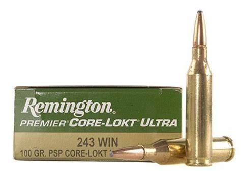 243 Remington 100 Grain Ammo