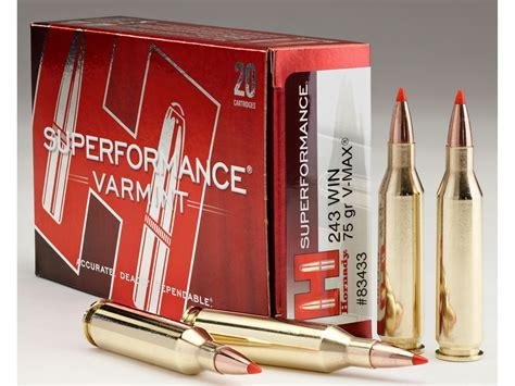243 Vmax Ammo
