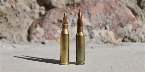 243 Winchester Ammo Vs 6 5 Creedmoor