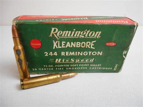 244 Rem Ammo