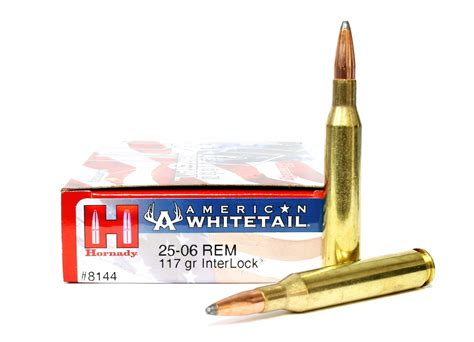 2506 Ammo Review