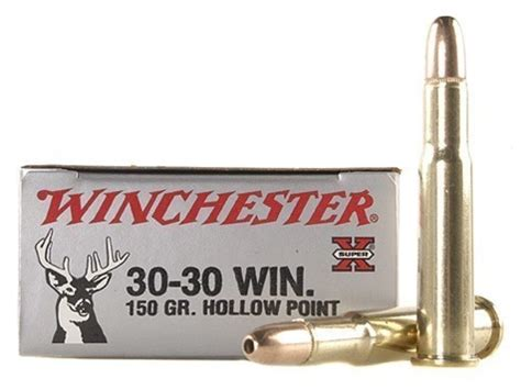 30 30 Win Hollow Point Ammo