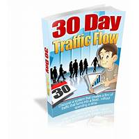 30 day traffic flow secret codes