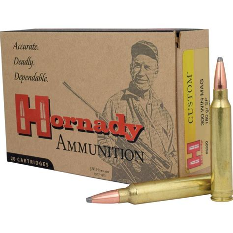 300 Win Mag Match Ammo 180gr And Tipton Gun Cleaning