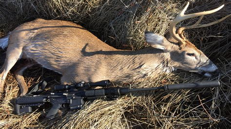 300 Blackout For Elk Hunting