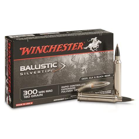 300 Mag Ammo Ballistics