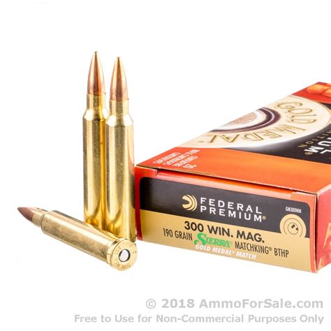 300 Win Mag Match Ammo For Sale