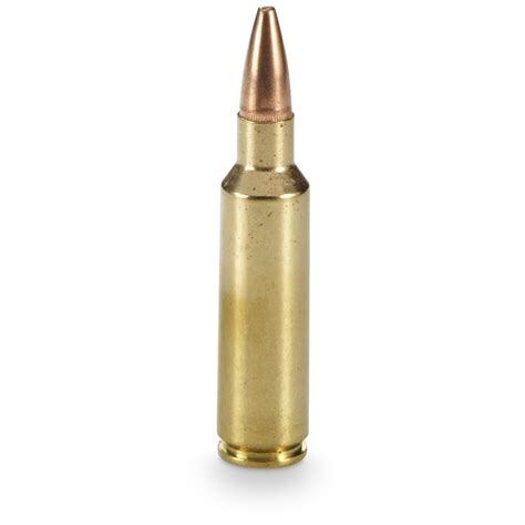 300wm Ammo