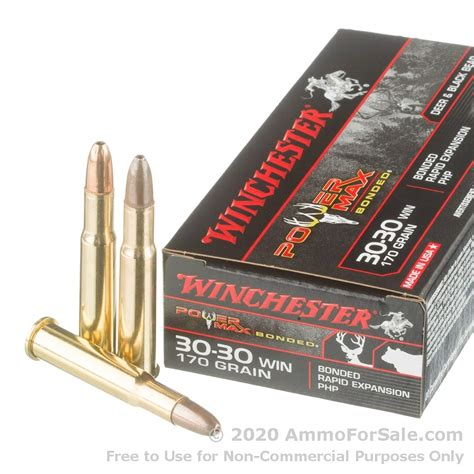 3030 The Best Hunting Ammo