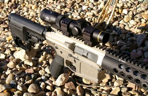 308 Rifle Pig And 308 Win Compact Rifle