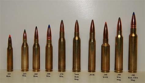 308 Assault Rifle Comparison