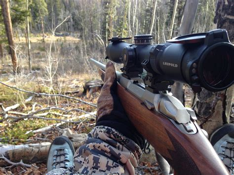 308 Rifle For Moose Hunting