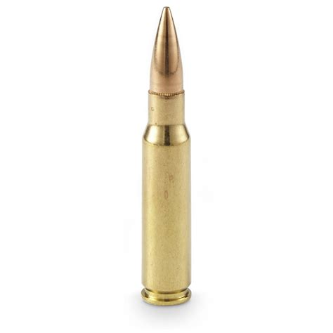 308 Win Shooting 7 62 X51 Nato Ammo