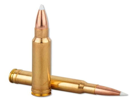 338 Win Mag Long Range Ammo