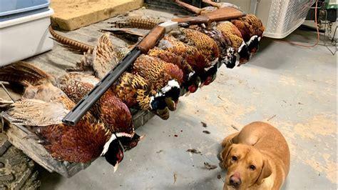 410 Shotgun Hunting Pheasants