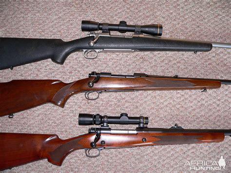 416 Rifle Hunting