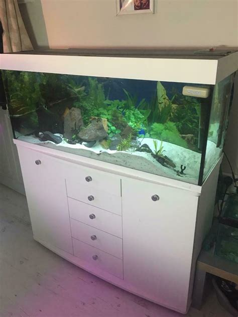 4ft Fish Tank With Wooden Stand