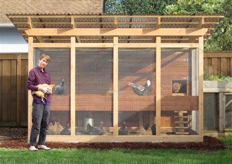 5-Chicken-Chicken-Coop-Plan