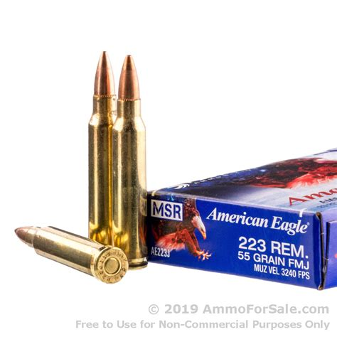 500 Rounds 223 Ammo For Sale