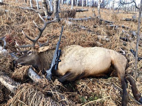 6 5 Prc For Elk
