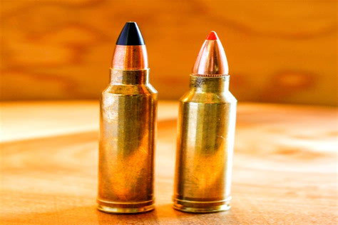7mm Mag Vs 300 Win Mag Long Range