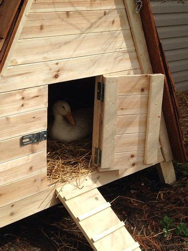 A Frame Duck House Plans