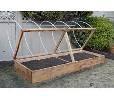 Best Above ground garden boxes for vegetables