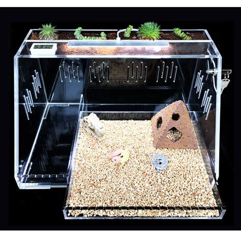 Acrylic-Reptile-Display-Box-Diy