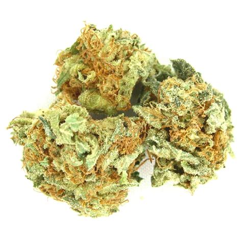 Ak 47 Weed Strain Review And Allbud Ak 47