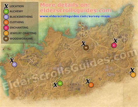 Alikr Desert Woodworking Survey