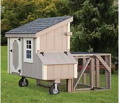 Best Amish chicken coop youtube