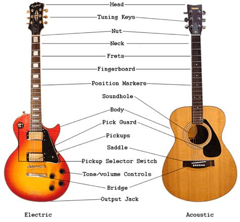 Anatomy Of Guitar Plans