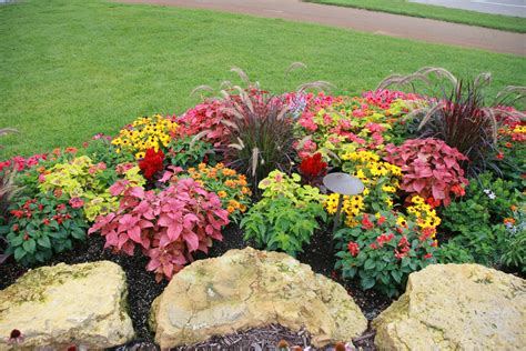 Annual-Flower-Bed-Plans