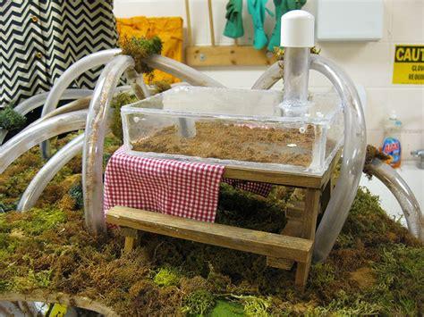 Ant-Farm-Table