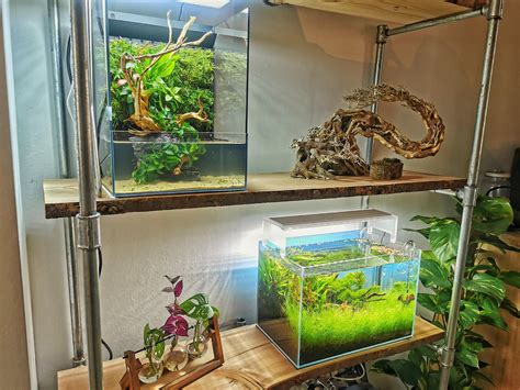 Aquarium-Diy-Shelves