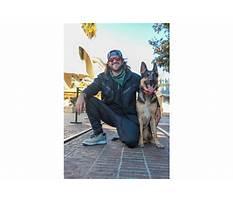 Best Arizona dog training dylan blau