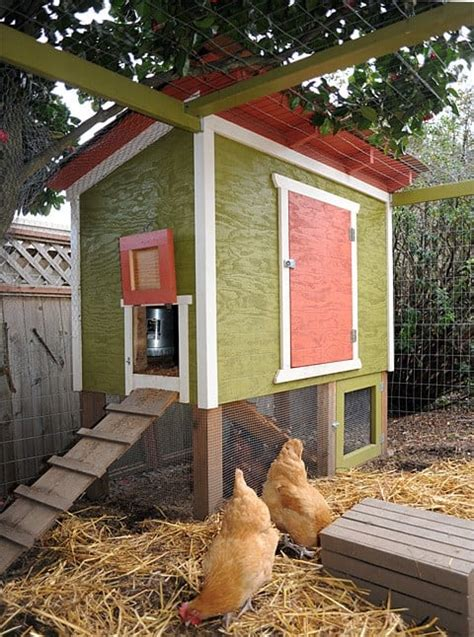 Backyard Chickens Free Coop Plans