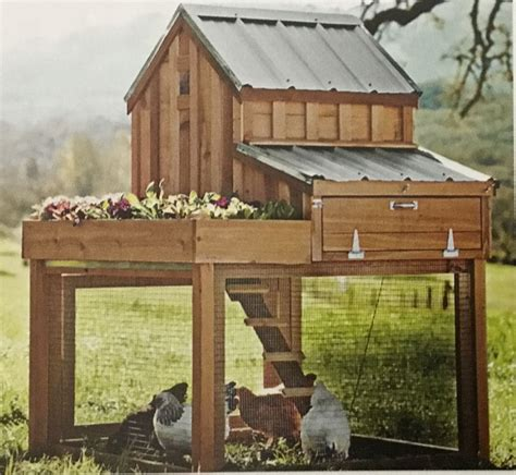 Backyard-Chicken-Coop-Plans-Egg-Collection