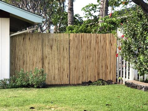 Bamboo Fences Diy