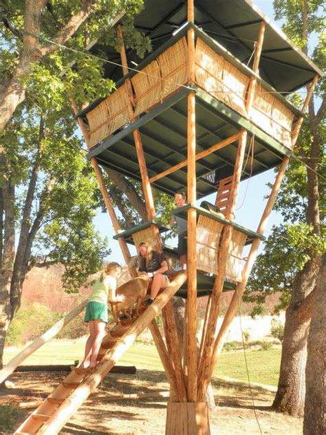 Bamboo-Treehouse-Plans