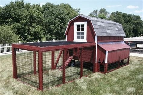 Barn Style Chicken Coop Design Plans