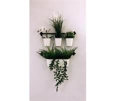 Best Basket planter ikea