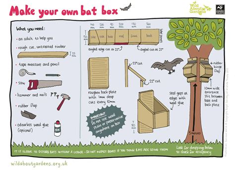 Bat-Box-Plans-How-To-Build