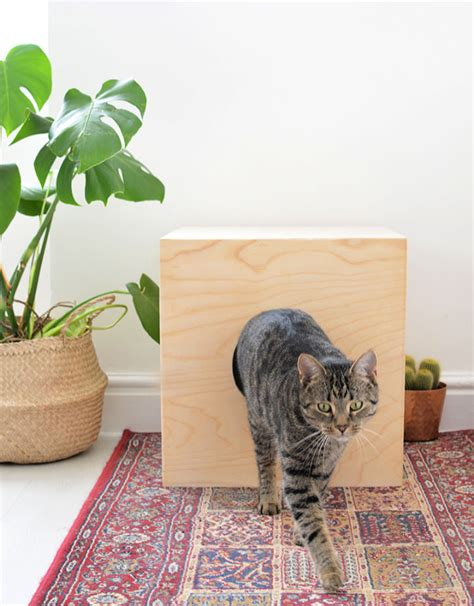 Bed For Cat Diy House