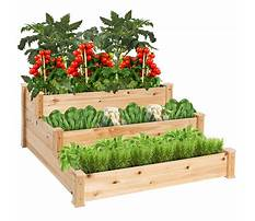 Best Bed planters