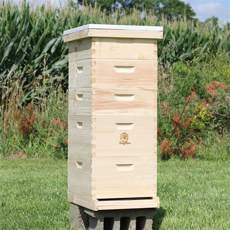 Bee Hives For Sale Ohio
