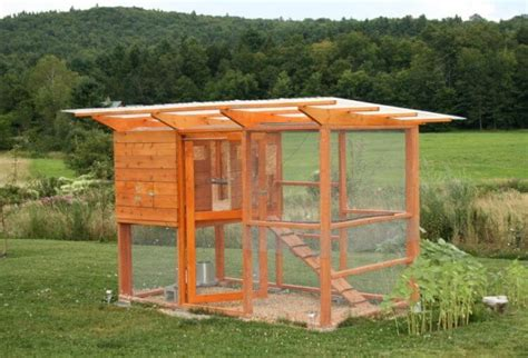 Best Chicken Coop Design