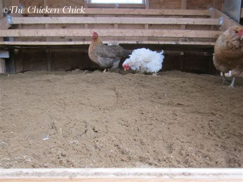 Best Ground Material For Chicken Coop