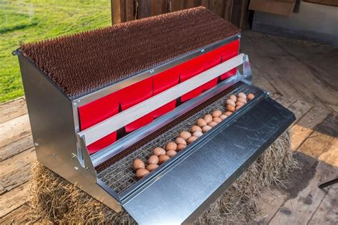 Best Nest Box Diy