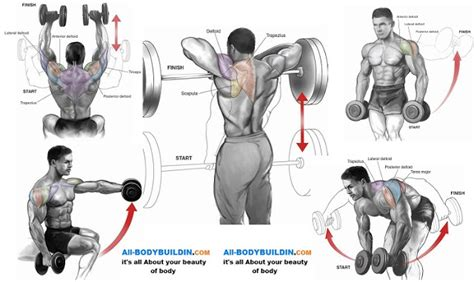 Shoulder workout for mass pictures